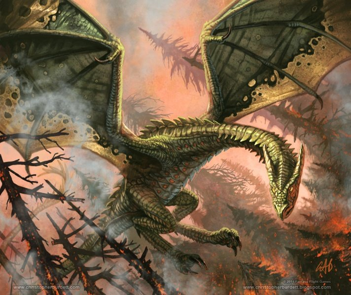 Файл:Rhaegal christopherburdett.jpg