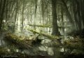 Swamps of the Neck by daroz.jpg