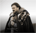 Hbo eddard.png