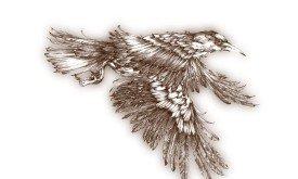14_ Feast_Crow-1.jpg