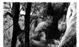 Иллюстрация к Буре мечей (Санса?)