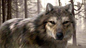 CG волк