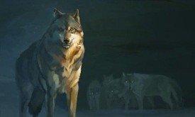 Волки (не по Мартину)