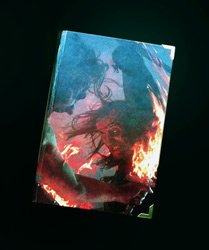Обложка Бури Мечей