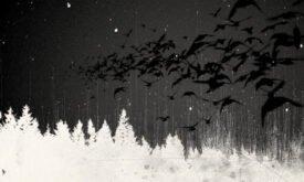 dark_wings3