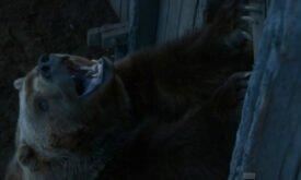 Медведь…