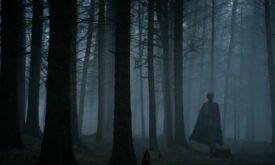 Жойен выходит из лесу