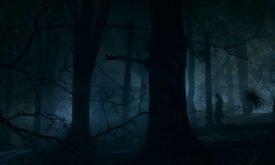 Но по ее сумрачным лесам ходят такие существа…