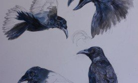 Трехглазая ворона