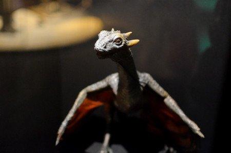 Потрясающая детальная модель дракона в натуральную величину была создана на основе описания Мартина; далее ее сканировали и использовали для создания компьютерной модели для сериала.