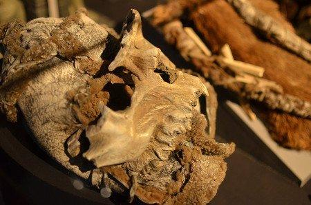 Костяной Лорд поверх меха носит накидку из воссозданных костей животных и людей, перевязанных между собой латексной лентой, похожей на подсохшие кишки.