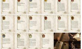 Страницы из Белой книги