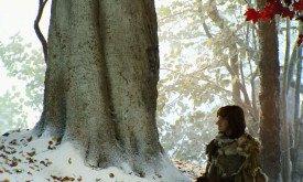 Бран под деревом. Над ним сиротливо свисает веточка с кленовыми листьями, чтобы зритель мог опознать чардрево.