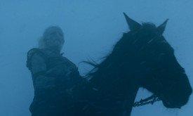 А вот и новый белый ходок со свежей лошадкой