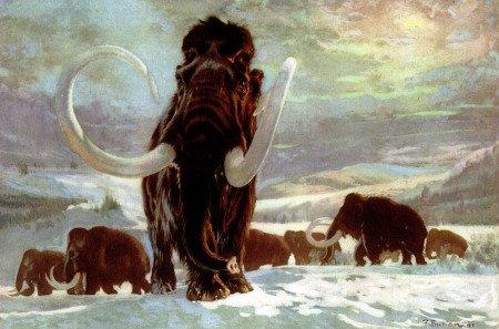 Рисунок-реконструкция мамонта, худ. Зденек Буриан. Позднее положение бивней художник изменил (ниже).