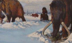 Рисунок-реконструкция мамонта, добывающего пропитание, скрытое под снегом, худ. Зденек Буриан (превью)