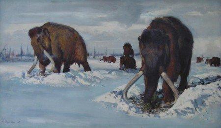 Рисунок-реконструкция мамонта, добывающего пропитание, скрытое под снегом, худ. Зденек Буриан