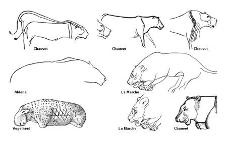 Первобытные изображения львов. Заметьте, гривы нет.