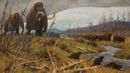 Рисунок-реконструкция мамонта, художник К. К. Флёров (Дарвиновский музей в Москве).