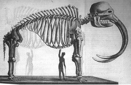 Реконструкция мамонта, худ. Чарльз Пил, 1821 г. (отсюда).