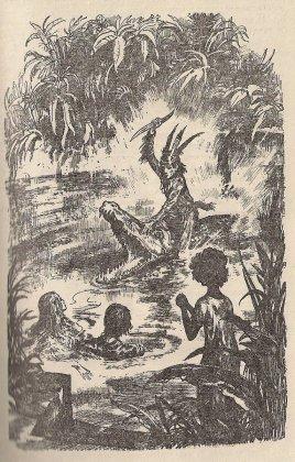 Иллюстрация к книге «Оцеола, вождь семинолов», Майн Рид.