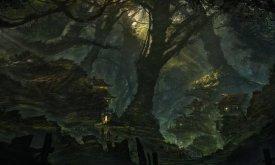 Лесной город (иллюстрация не связана с ПЛИО)