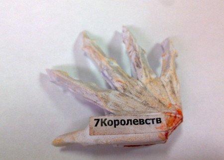 Рука Джейме (Ольга)