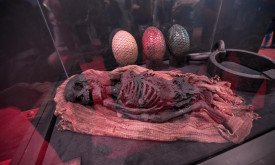 Труп ребенка и драконьи яйца