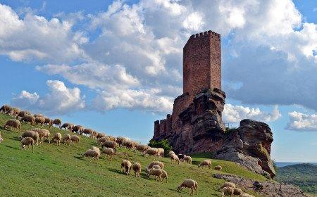 Крепость Кастильо-де-Сафра в Кампильо-де-Дуэньяс (Гвадалахара)