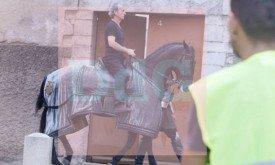 Конь с попоной в цветах Тиреллов