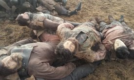Итоги битвы: трупы Болтонов и Карстарков