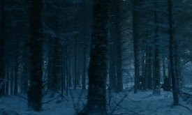 Теон вместе с Сансой бегут по лесу