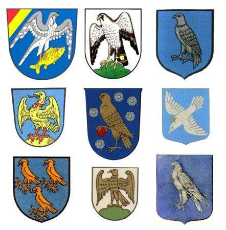 Примеры земных гербов с соколами