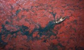 Кровяное море, деталь (худ. Benjamin Nowak)