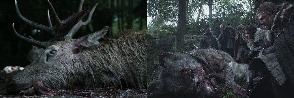 Убившие друг друга олень и волк в самом начале повествования воспринимаются Старками как дурной знак