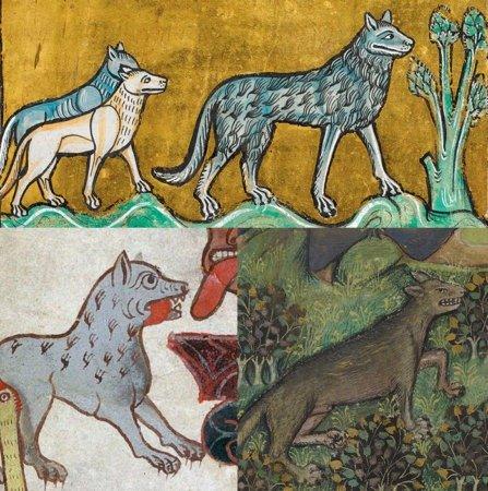 Волки в средневековых бестиариях