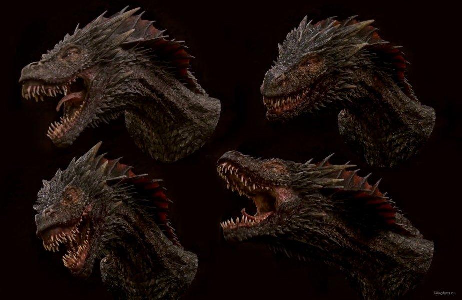 Различные выражения морды драконов