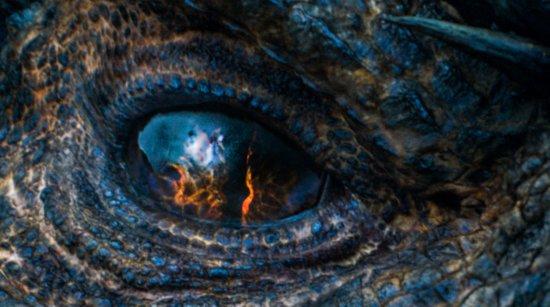 Строение глаза взрослого дракона