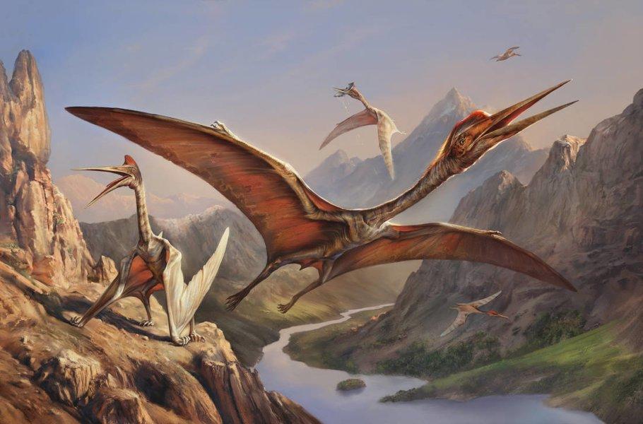 Самый крупный птерозавр кетцалькоатль имел массу около 200 кг с размахом крыльев до 15 м