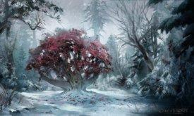 Чердрево в Зачарованном лесу