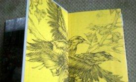 Фотография книги: форзацы